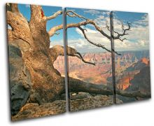 Grand Canyon Tree Landscapes - 13-0210(00B)-TR32-LO